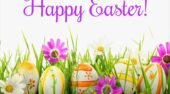Happy Easter from All at Fitz Autos!